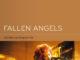 DVD-Cover Fallen Angels