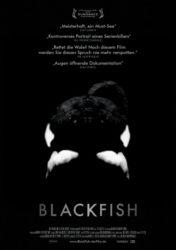 Filmposter Blackfish