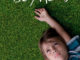 DVD-Cover Boyhood