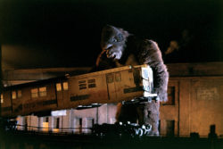Szene aus King Kong (1976)