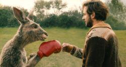 Das Känguru gibt Marc die Faust.